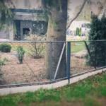 piirdeaed, aia ehitus, väravad, metallaed